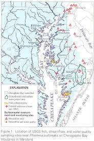 chesapeake bay tributary