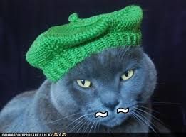 french cats