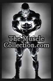 bodybuilder clothing