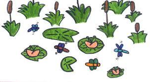 frogs habitat