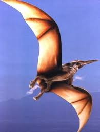 pterodactyl images