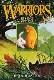 rising storm warriors