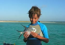 peche barracuda