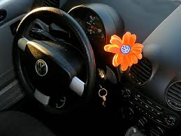 new beetle flower