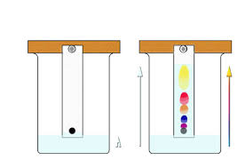 chromatography diagram