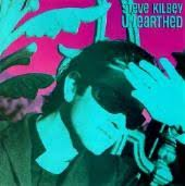 Steve Kilbey - Out Of The Pink Sky
