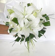 lily wedding flower