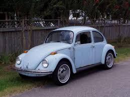 cars bugs