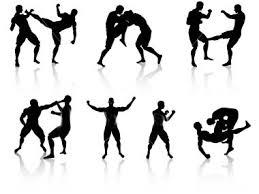 martial art combat
