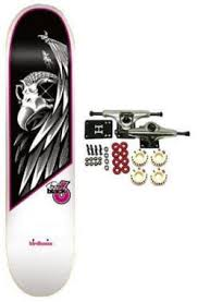 tony hawk birdhouse skateboards