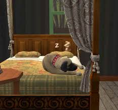 my sims pets