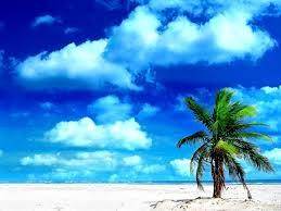holiday at the beach