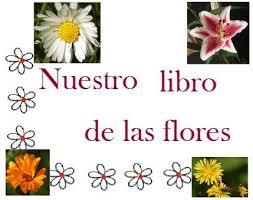 fotos y nombres de flores