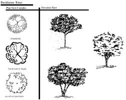 landscape design trees