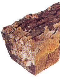 spalted wood