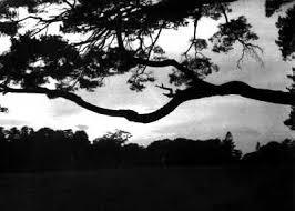 black and whitephotography