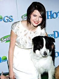 hotel for dogs premiere