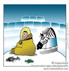 climate change animals