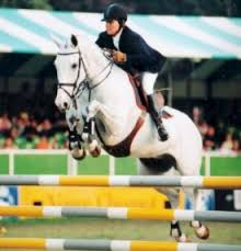 horse jumping shows