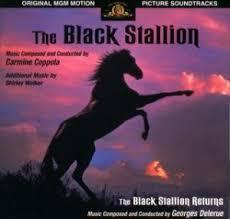 black stallion film