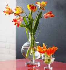 pictures of flowers in vases