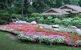 chinese garden design