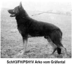 types of german shepherds