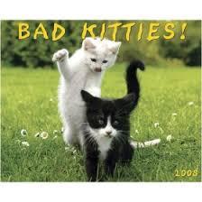bad kitties