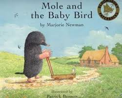 mole and the baby bird