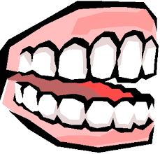 false teeth images