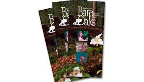 new brochures