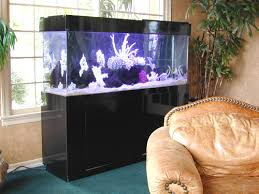 black fish tanks