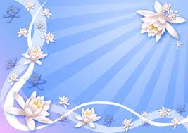 flowers background wallpapers
