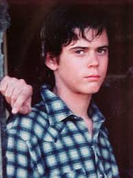 ponyboy in the outsiders