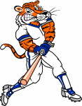 tiger base ball