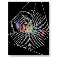 net spiders