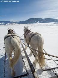 pull sleigh