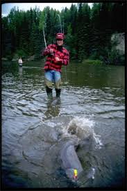 alaska fishing pictures