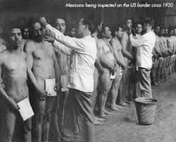 immigration 1910