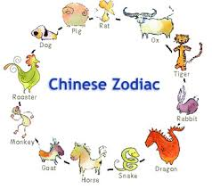 chinese new year signs