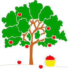 apple family tree