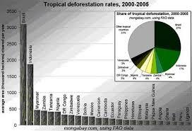deforestation rate