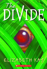 the divide by elizabeth kay