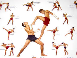 muay thai elbows