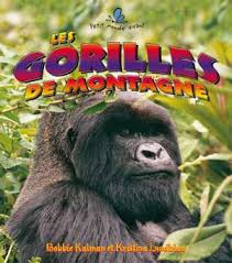 gorilles des montagnes