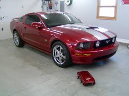 mustang paint