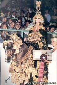 horse and rider costumes