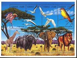 animals in ghana