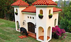 dog house design