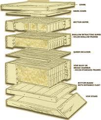 honeybee boxes